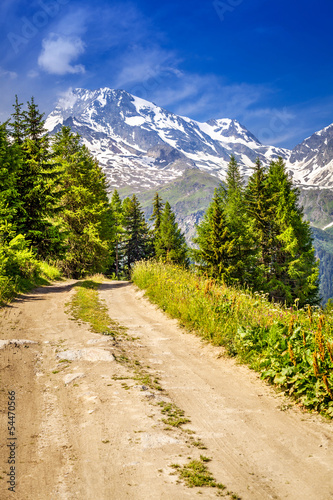 Path in the mountains - French Alps