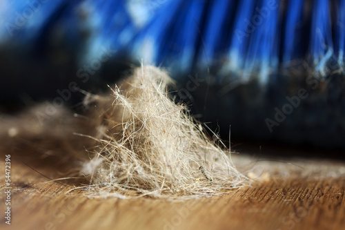 Broom, Dust & Fur Ball on Parquet Floor