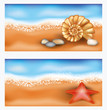 Summer beach banners with starfish and seashell, vector