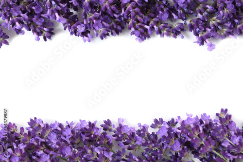 Foto op Canvas Lilac Frame with lavender