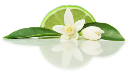 Lime and blossom
