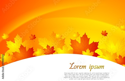 Autumn abstract background with leaves. Vector design eps 10