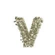 Kleiner Buchstabe v gebildet aus Dollar Banknoten