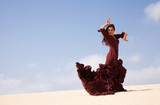 flamenco in the dunes