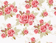 Cute seamless wallpaper design with rose flowers