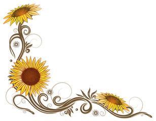 Sonnenblumen, Sommer, Blumen, Blüten