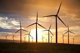 Fototapety wind turbines on sunset sky