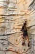 business woman on rock wall
