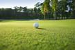 Leinwanddruck Bild - Close up of golf ball on green