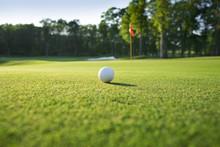 "Постер, картина, фотообои ""Close up of golf ball on green"""
