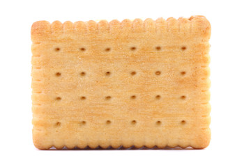 Isolated biscuit.
