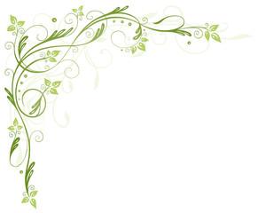 Blätter, Laub, Ranke, Grüntöne, green