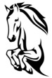 jumping horse black and white vector outline