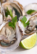 Oysters with green on the plate with lime
