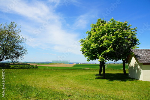 canvas print picture Landschaft in der Eifel bei Lutzerath