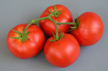 Tomato 18