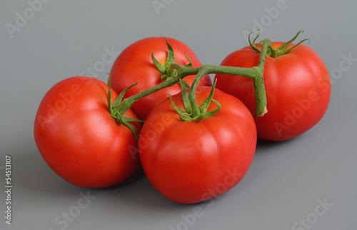 Tomato 12