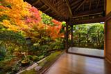 Fall Foliage at Ryoan-ji Temple in Kyoto, Japan