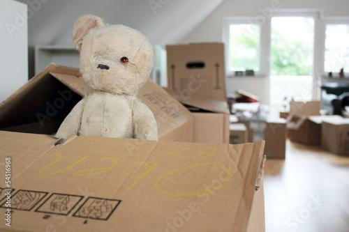 Leinwandbild Motiv Geliebter Teddy