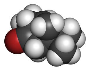 Thujone absinthe molecule, chemical structure.
