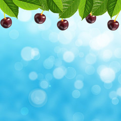Cherry and leaves on the sky background