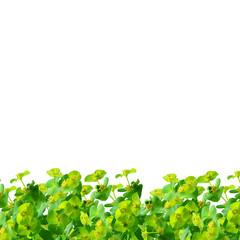 Green plants border