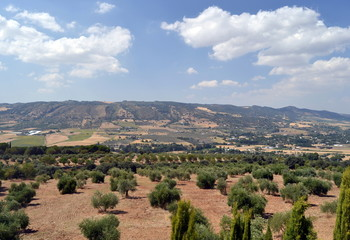 Landscape of the Sierra de Ronda, Spain  in summer