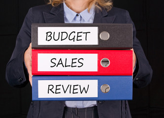 Budget - Sales - Review