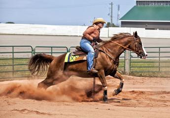 Pole Bender Western Rider