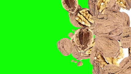 Falling Walnuts (with Alpha Channel)