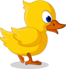 cute baby duck cartoon walking