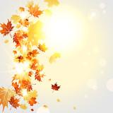 Autumnal background