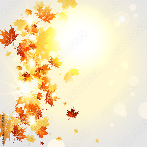 Autumnal background