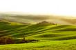 Countryside, San Quirico´Orcia , Tuscany, Italy