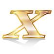 x アルファベット エンブレム