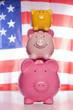 American Piggy banks