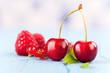 frische Früchte im Sommer