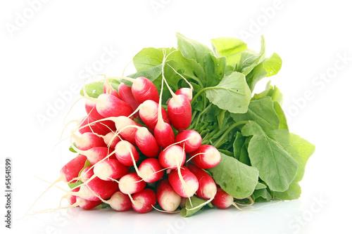 Beaux radis frais