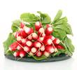Belle botte de radis
