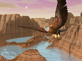 Eagle upon canyons - 3D render