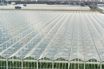 Greenhouses from top view