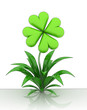 isolated flower with cloverleaf blossom