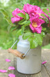 Dog rose bouquet in old milk churn