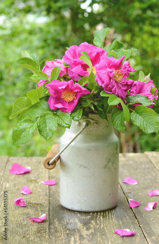 Dogrose bouquet in old milk churn