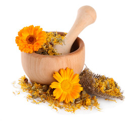 Fresh and dried calendula flowers in wooden mortar  isolated