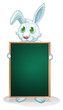 A bunny holding an empty board