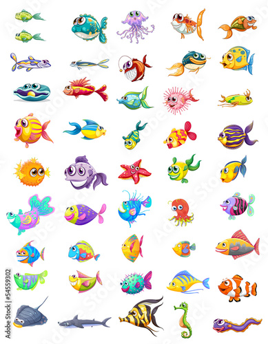 Group of different fishes - 54559302