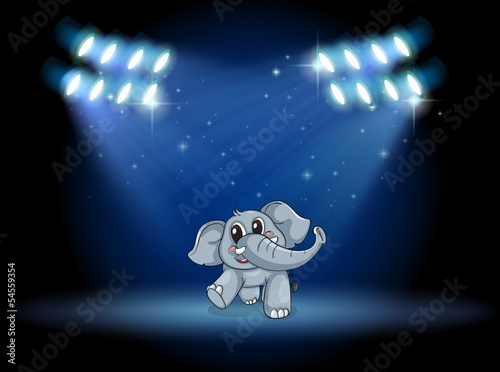 An elephant dancing at the stage under the spotlights