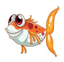An orange fish with big eyes