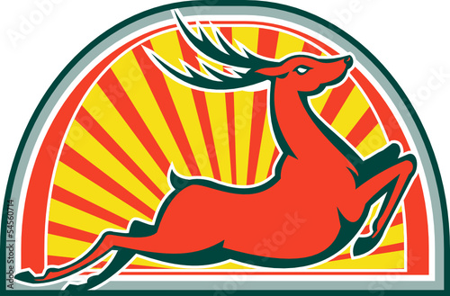 Red Deer Stag Buck Jumping Side